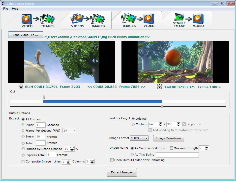 Video Image Master Express 7.5